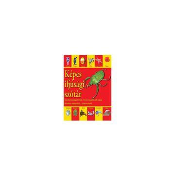 Dictionar vizual pentru cei mici - limba maghiara (Aquila)