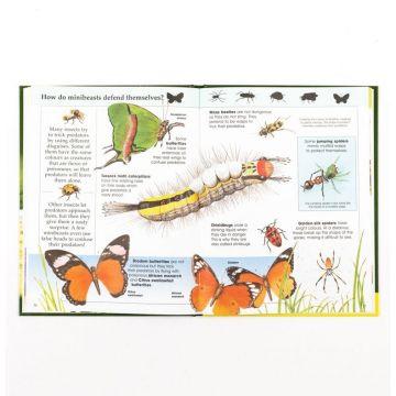 Knowledge Masters BIG BOOK OF ANIMALS - Marea carte cu animale (877/ANBB)