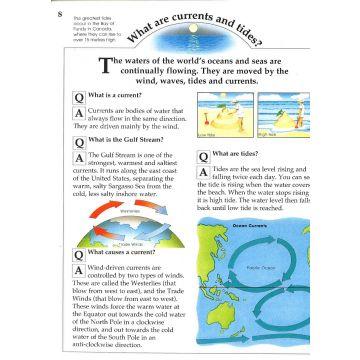 K/M Sea and Sealife- marea carte despre mari si oceane (909/SEKM)