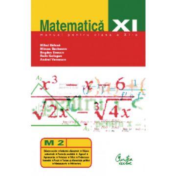 Matematica (M2). Manual pentru clasa a XI-a (Curtea veche)