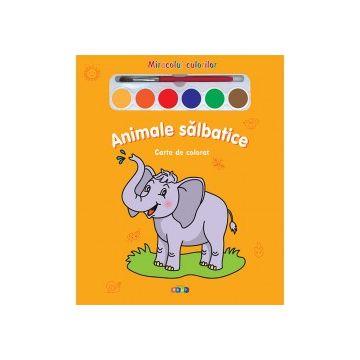 Miracolul culorilor. Animale salbatice (Prut)