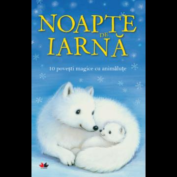 Noapte de iarnă. 10 povești magice cu animăluțe (Litera)