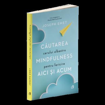 Cautarea cerului albastru: Mindfulness pentru fericire aici si acum (Curtea veche)