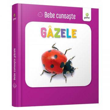 Gazele- BEBE CUNOASTE (GAMA)