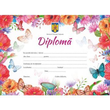 Diploma de absolvire pentru clasele I-IV (Sinapsis)
