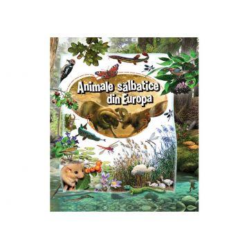 Animale salbatice din Europa  (Kreativ)