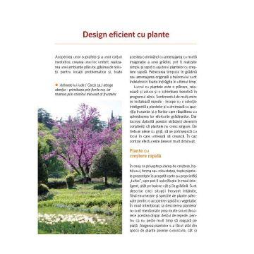 Plante cu crestere rapida - in gradina, pe terasa sau balcon (Casa)
