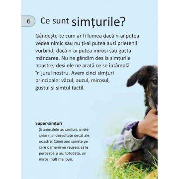 Simturi (Seria Discover Science) (Niculescu)