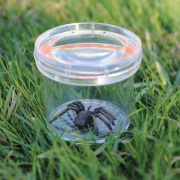 Educational Insights Borcan cu lupa pentru observarea insectelor