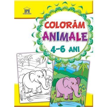 Coloram - Animale (4-6 ani)