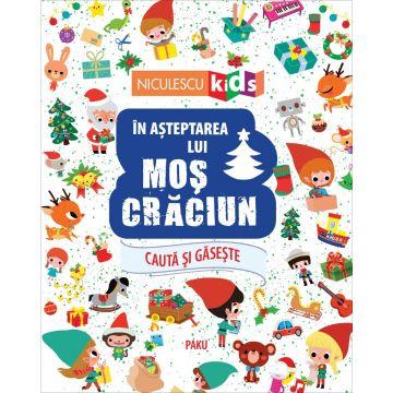 În așteptarea lui Moș Crăciun (Seria Caută și găsește...) (Niculescu)