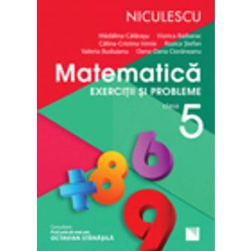 Matematica. Exercitii si probleme pentru clasa a V-a (Rozica Stefan). Aprobat de MEN prin ordinul