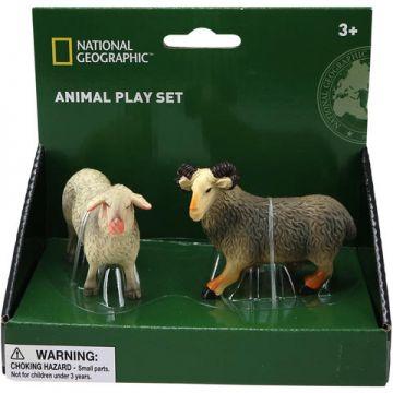 National Geographic Set 2 figurine - Oita si berbec