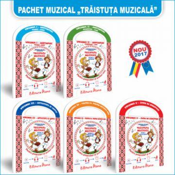 PACHET 5 TRAISTUTE MUZICALE