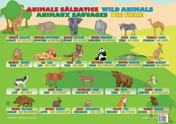 Plansa Animale Salbatice Ars Libri